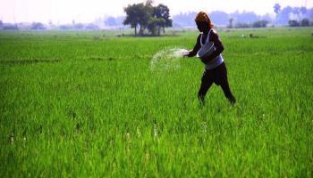 सहकार किसान कल्याण योजना राजस्थान सरकार