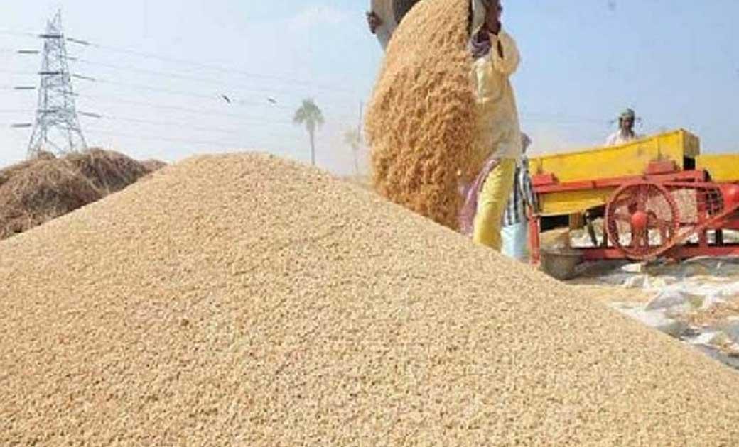 धान आयात पर प्रतिबंध