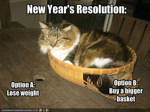 New Year Resolution Jokes01
