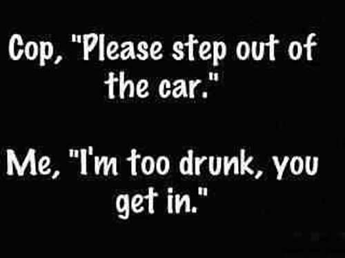 Alcohol Party Quotes