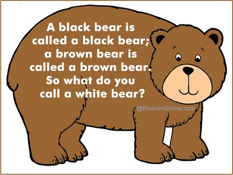Fun Riddle: What Do You Call A White Bear?