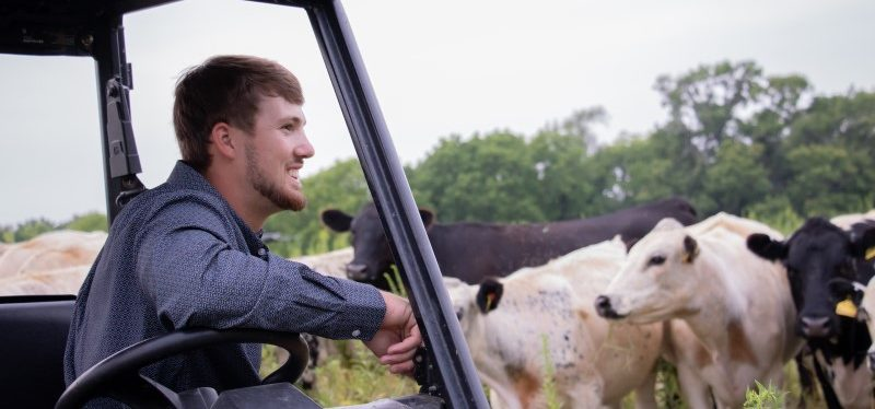 student in a utility vehicle in a field with cattle in the background