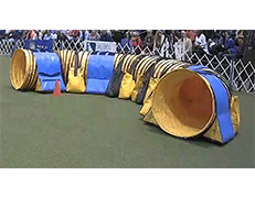 Mad Agility Competition Safety Tunnel