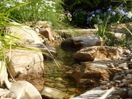 Natural looking pondless stream with rocks and pebbles