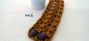 Pumpkin Spice Crochet Cozy