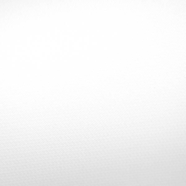 Savage Infinity Vinyl Background - 9 x 20' (White) V01 ...