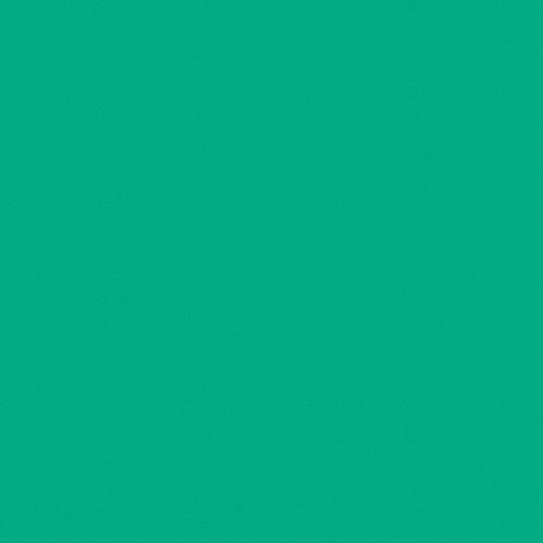 LEE Filters CL116 Cool LED Medium Blue Green Filter 116CLS B&H