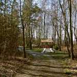 Las Łysochy
