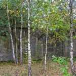 """Obóz jeniecki """"Frontstalag 307 – Unterlager B"""" w Sielczyku"""