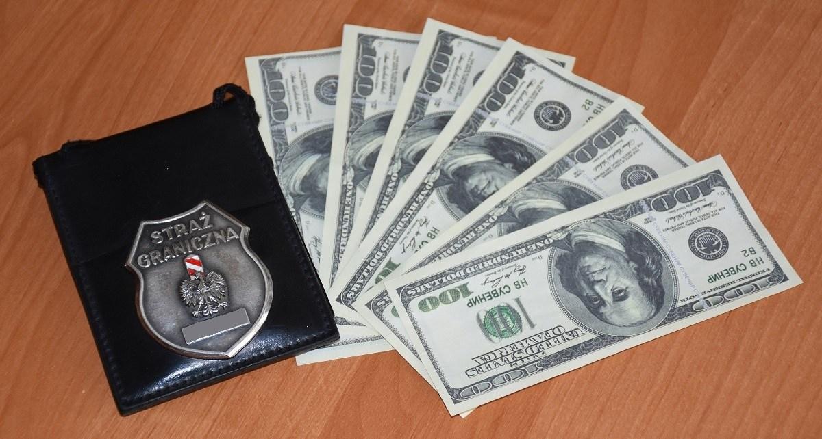 Imitacja dolarów na granicy w Terespolu