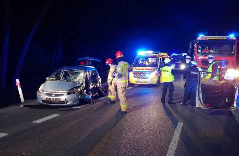 Wtargnięcie dzikiego zwierzęcia na jezdnię przyczyną wypadku drogowego na DK-2 w Krzewicy