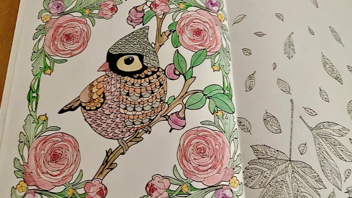 Decotime kleurplaat vogel