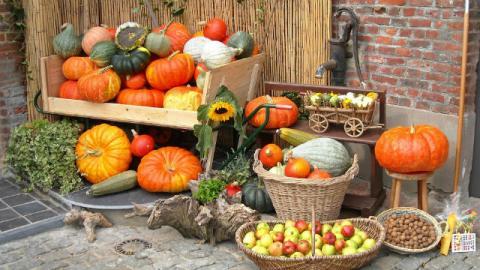 Frutta e verdura create da Dio