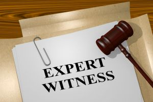 Franchise Expert Witness