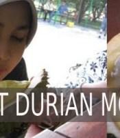 manfaat durian montong