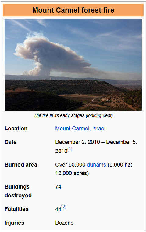 Image result for pics of 2010 carmel fires