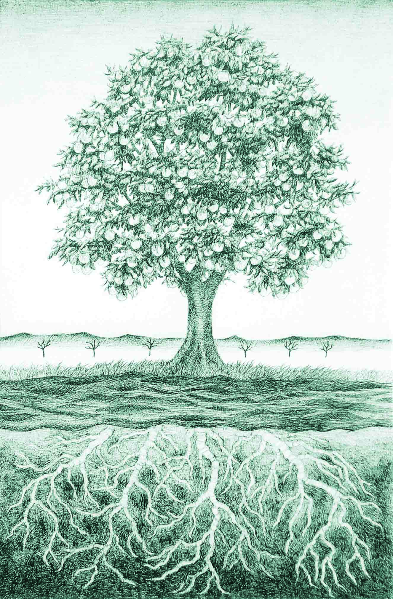 Parts Of A Tree And Psalm 1