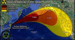 Fukushima radiation fallout map