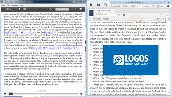 Logos Bible reference on Adobe DE PC display