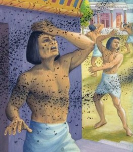 Moses plague of gnats on Egyptians - Artist Unknown