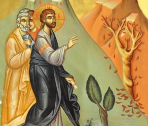 Jesus curses the fig tree - Artist Unknown