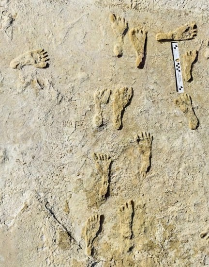 White Sands has the largest collection of fossilized human footprints
