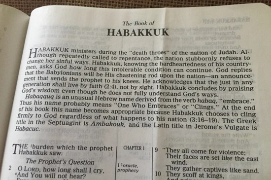 Detailed outline of the Book of Habakkuk
