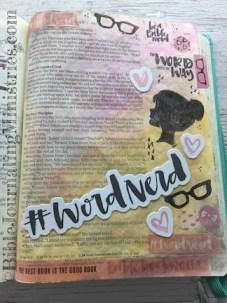Bible Nerd Word Nerd Entry