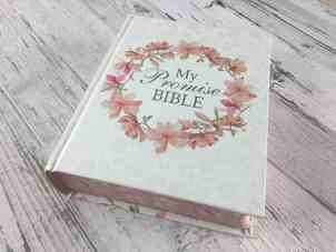 my promise bible