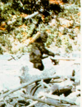 Controversy of the Bigfoot Snowman Yeti