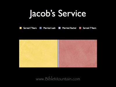 Jacob served 7 years, then he married Leah, then he married Rachel, then he served another 7 years.