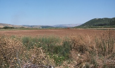 Picture of the Elah Valley, site of the battle between David and Goliath