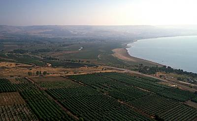 Bethsaida In Galilee