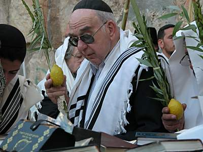 Man with four species of Sukkot