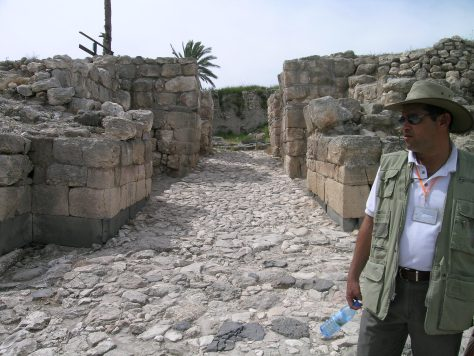 The gate complex at Megiddo