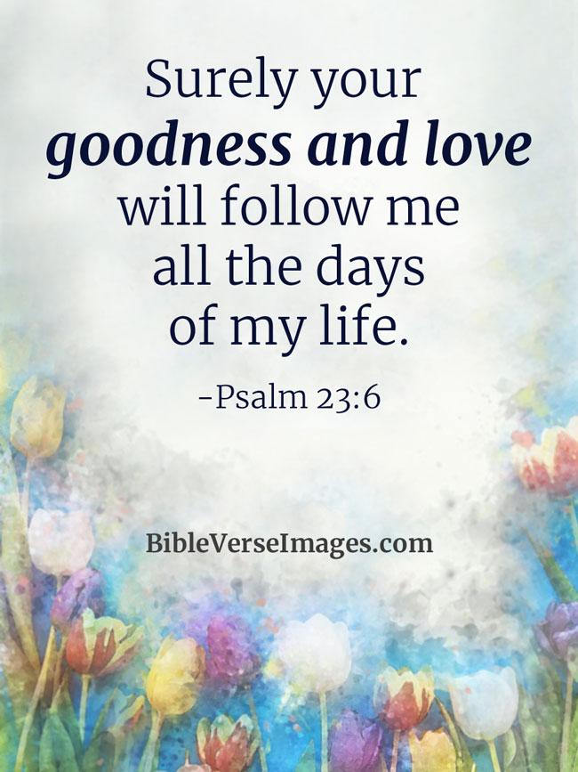 Image result for psalm 23:6 niv