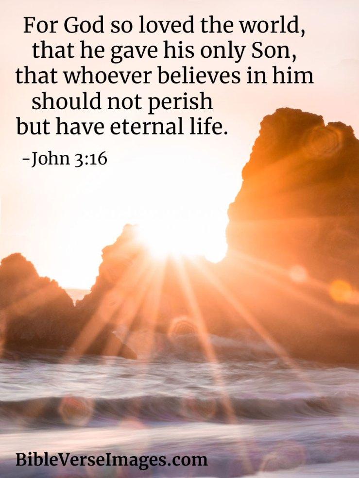 John 3:16 - Bible Verse about Life - Bible Verse Images