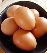 First few eggs
