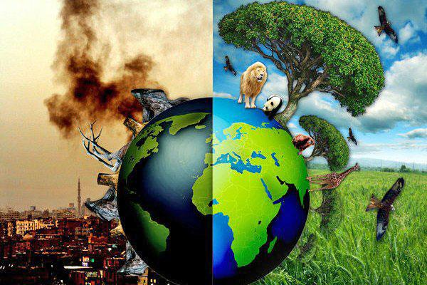 Resultado de imagen para consecuencias de la extincion de especies