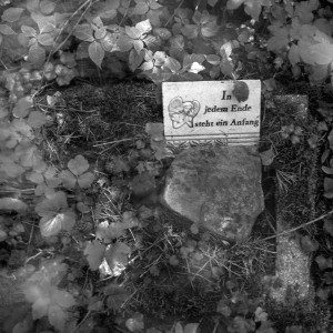 Lutry na Kaszubach – wystawa fotografii