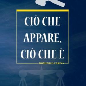 Ciò che appare, ciò che è – Domenico Farina