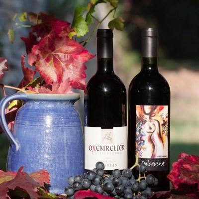 Il Vino: i suoi colori, le sue sfumature e la sua effervescenza