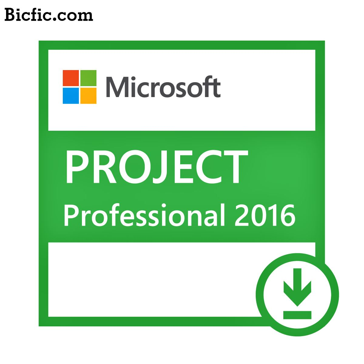 ms project 2010 cracked download