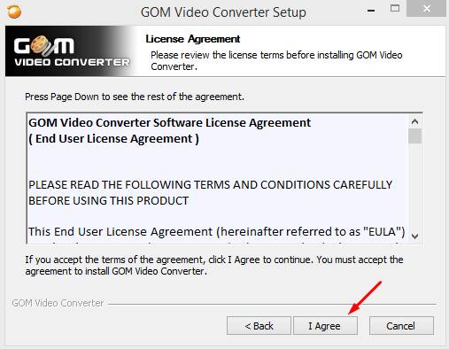 gom video converter serial pic 2