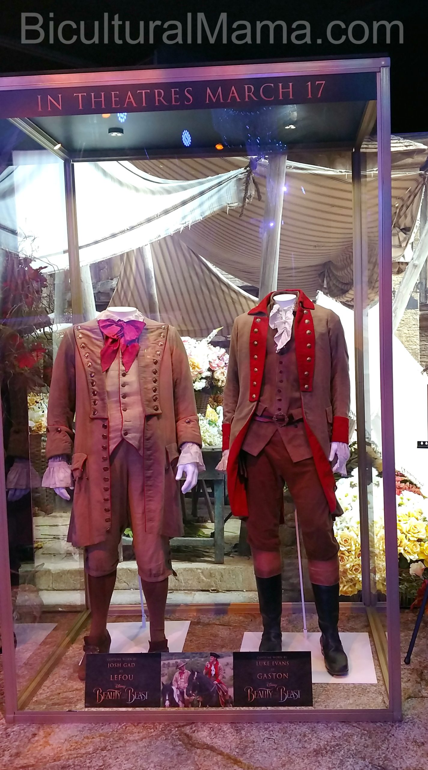 Bicultural Mama Beauty and the Beast Uniforms