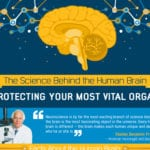 The Science Behind the Human Brain and Keeping It Healthy