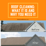 Roof Cleaning: What It Is and Why You Need It #NLZCleaning Discount Code