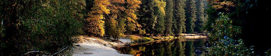 cropped-landscape-1801985_1920-1.jpg