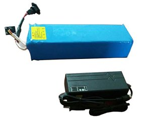 48v 15ah Lithium Polymer Battery for Electric Bicycle with Charger and BMS