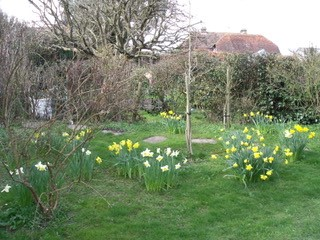 2010 Garden in original state